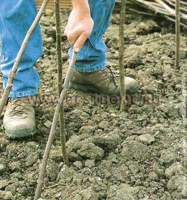 Решетка из ореховых прутьев, решетка для цветника, как самому сделать красивый забор из ореховых прутьев, как сделать живую изгородь