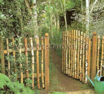 Забор из березы своими руками фото 46