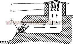 Для устройства походной коптильни в обрывистом берегу прорывают нору длиною около 1 м. В конце ее выводят наружу.